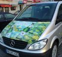 11-08-KoePi-Lemon-Shuttle-vorne